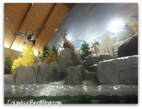 Stuffed animals at Cabela's Columbus OH